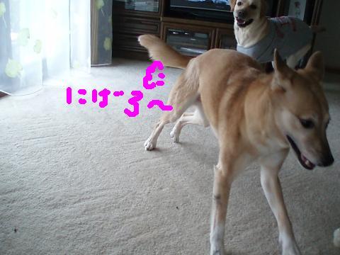 318_5